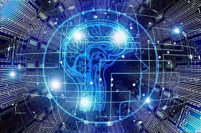 grafica che rappresenta la mente umana