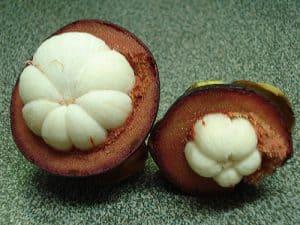 all'interno del frutto del mangostano